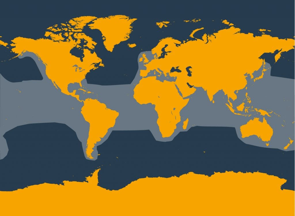 False killer whale distribution map
